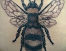 bee tattoo by Alex