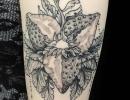 botanical tattoo by Alex