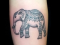 elephant mehndi tattoo by Alex